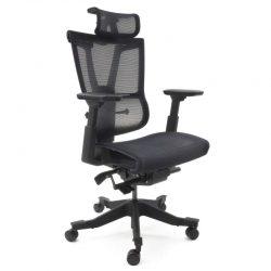Ergonomiczny fotel biurowy Ergosolid Gualtiero-1000 czarny